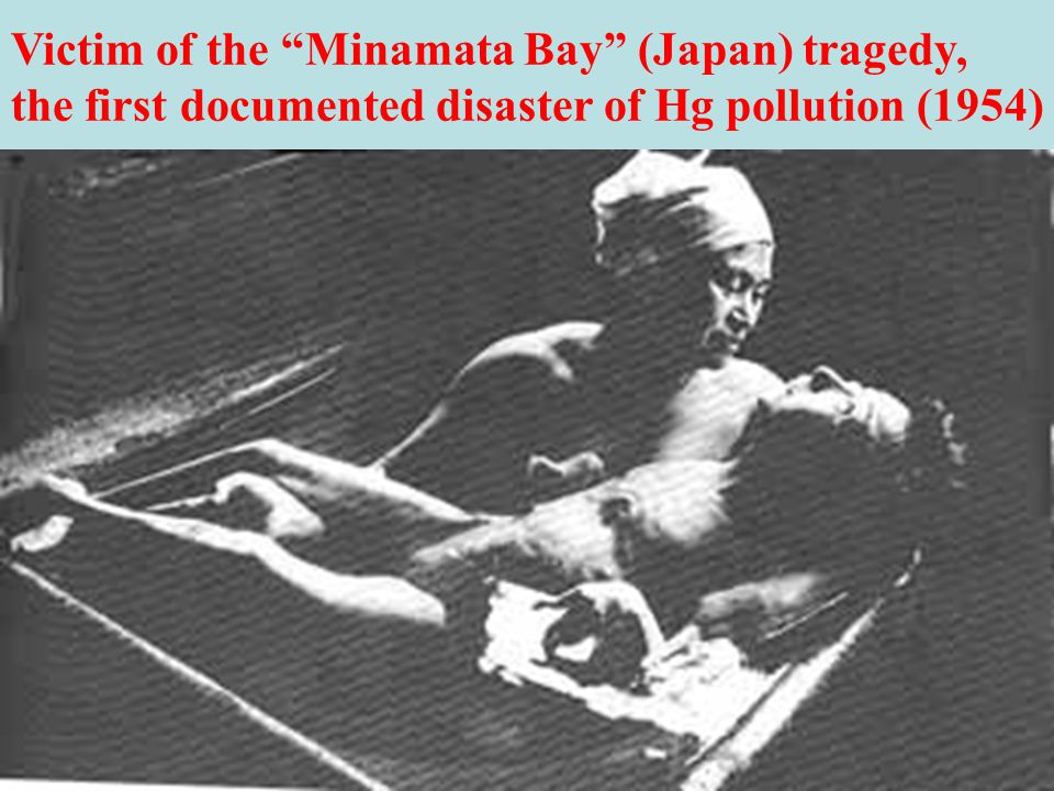 minamata mercury pollution disaster essay Plese write an essay on pollution   pollution can also be the consequence of a natural disaster  is minamata disease, which is caused by mercury.