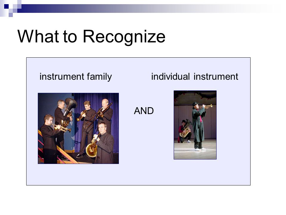 an analysis of the instrument bassoon in oboe family Something about sound the woodwind family of instruments the air column   flutes vs reeds: open and closed ends conical bores: oboes, bassoons and.