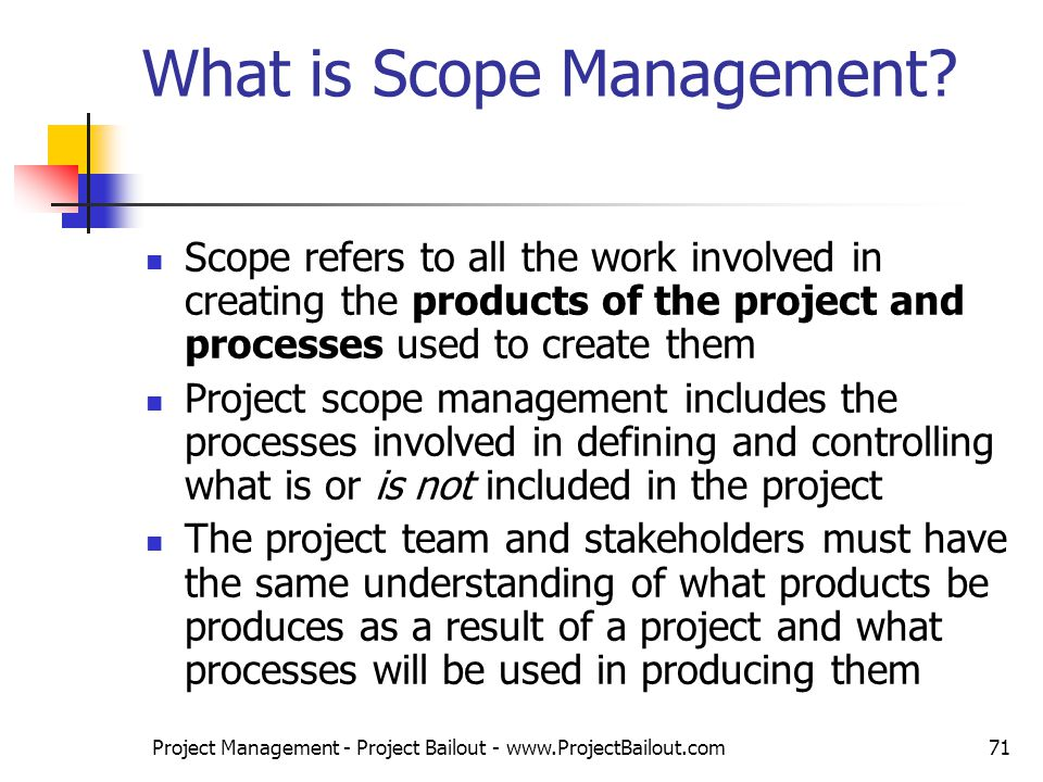 Describe the background and principles of project management