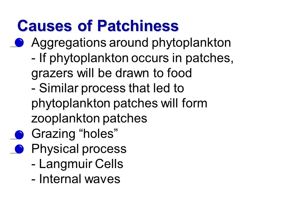 Causes of Patchiness Aggregations around phytoplankton