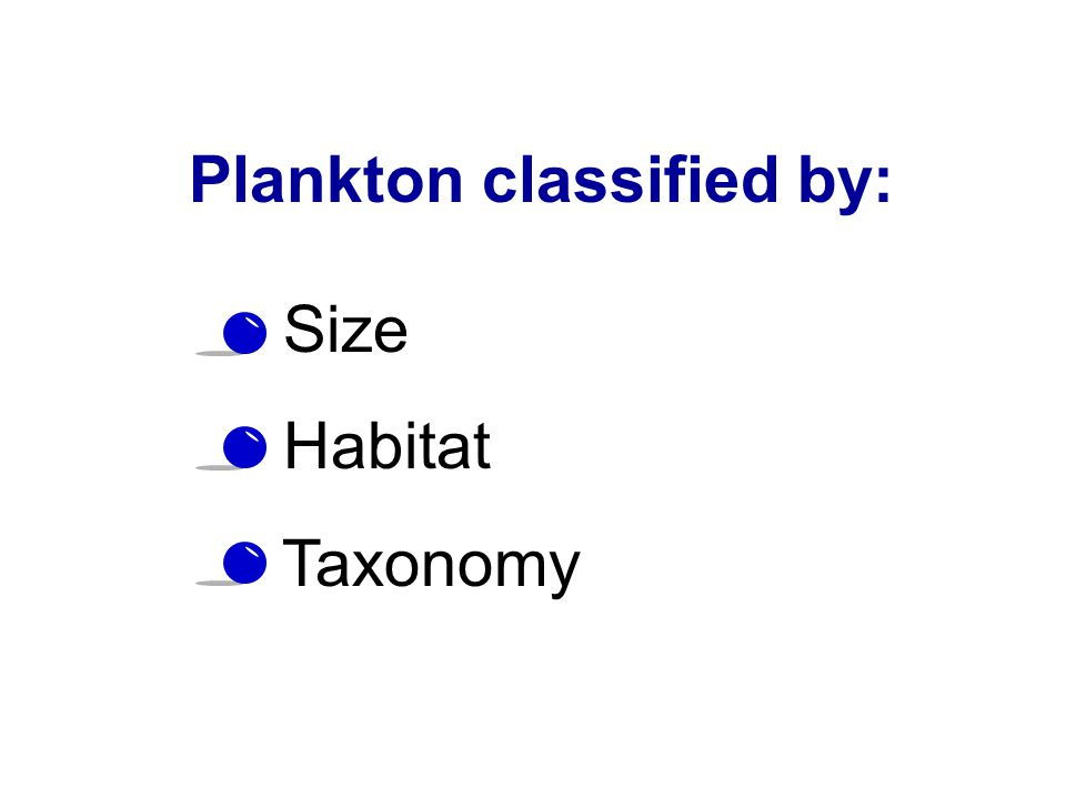 Plankton classified by:
