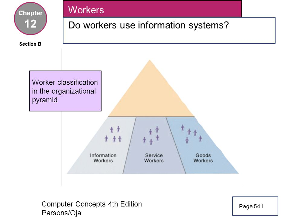 12 Workers Do workers use information systems Worker classification