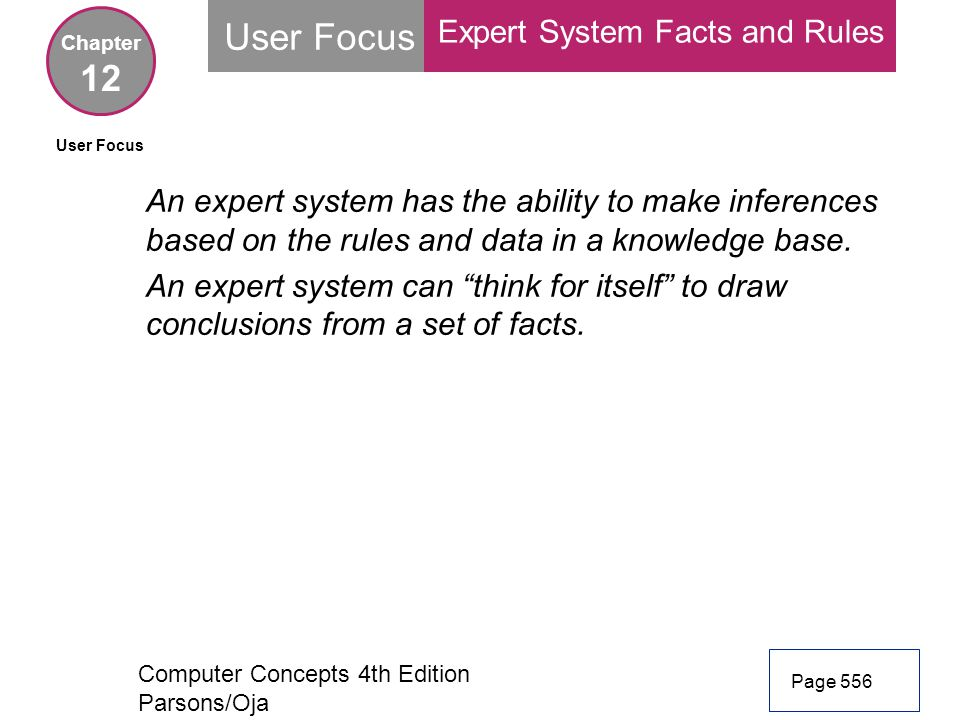 User Focus 12 Expert System Facts and Rules