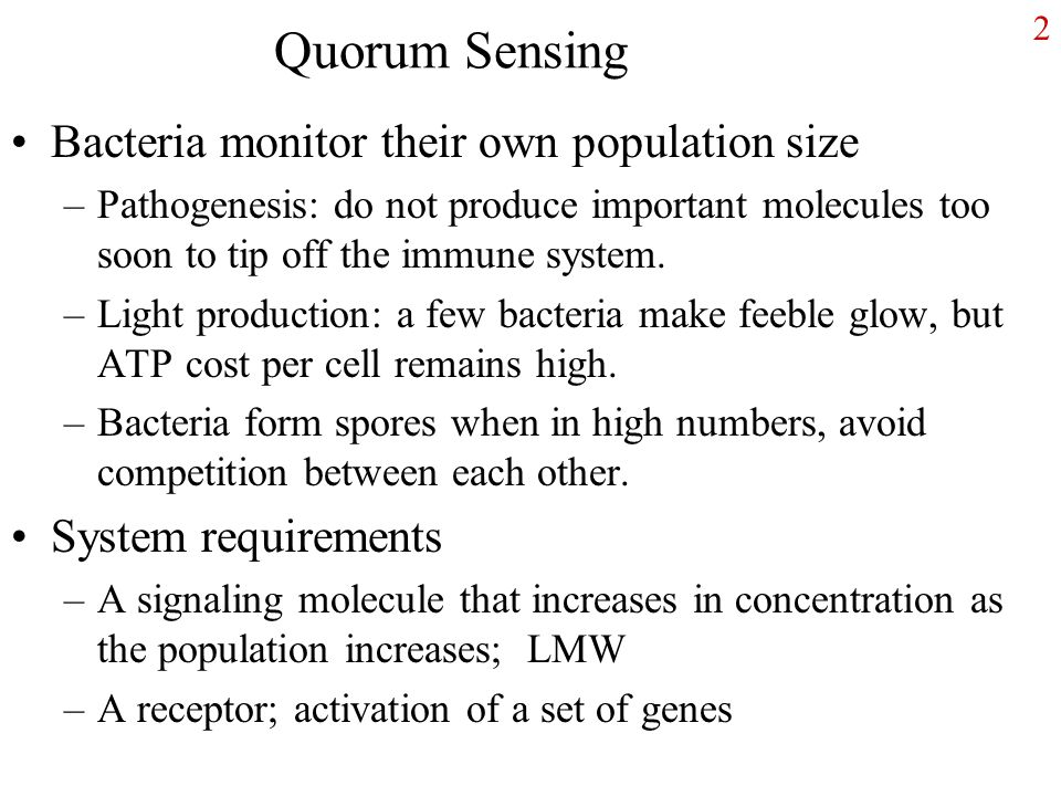 Quorum Sensing Bacteria monitor their own population size