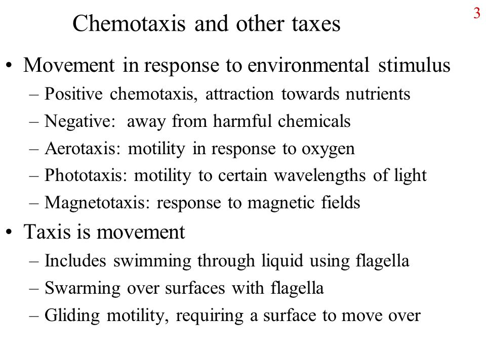 Chemotaxis and other taxes