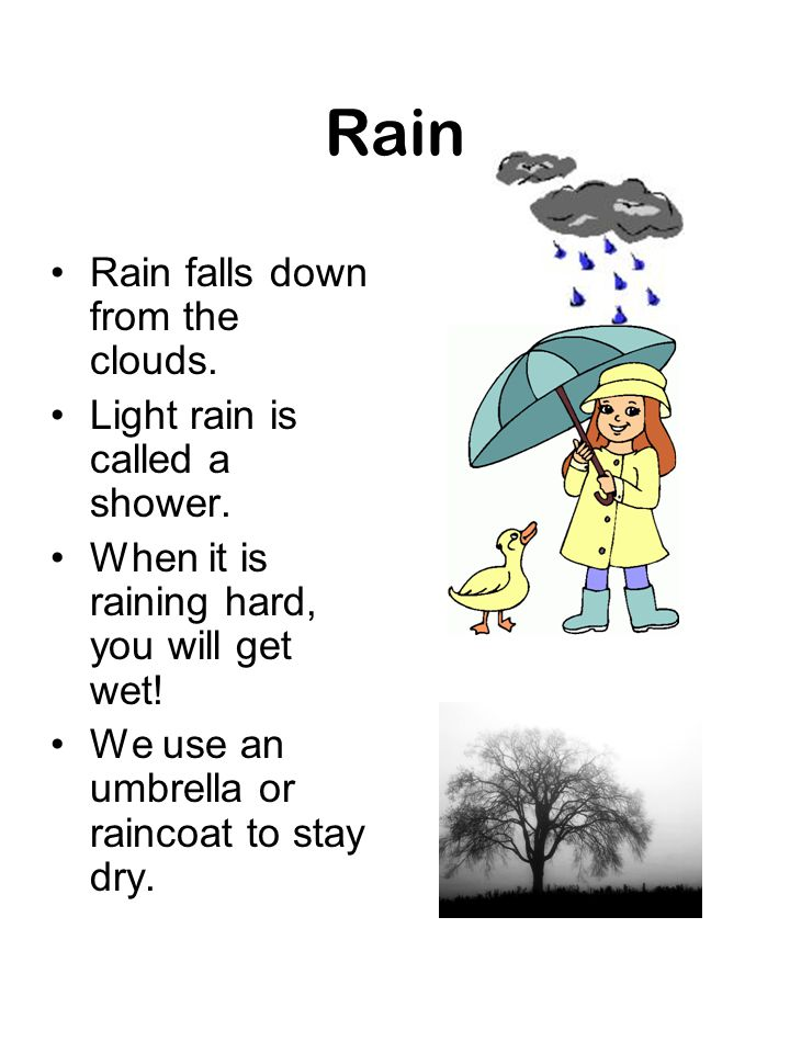 Rain Rain falls down from the clouds. Light rain is called a shower.