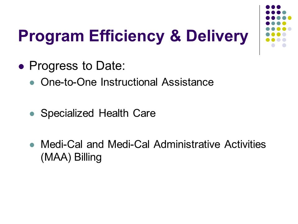 Program Efficiency & Delivery