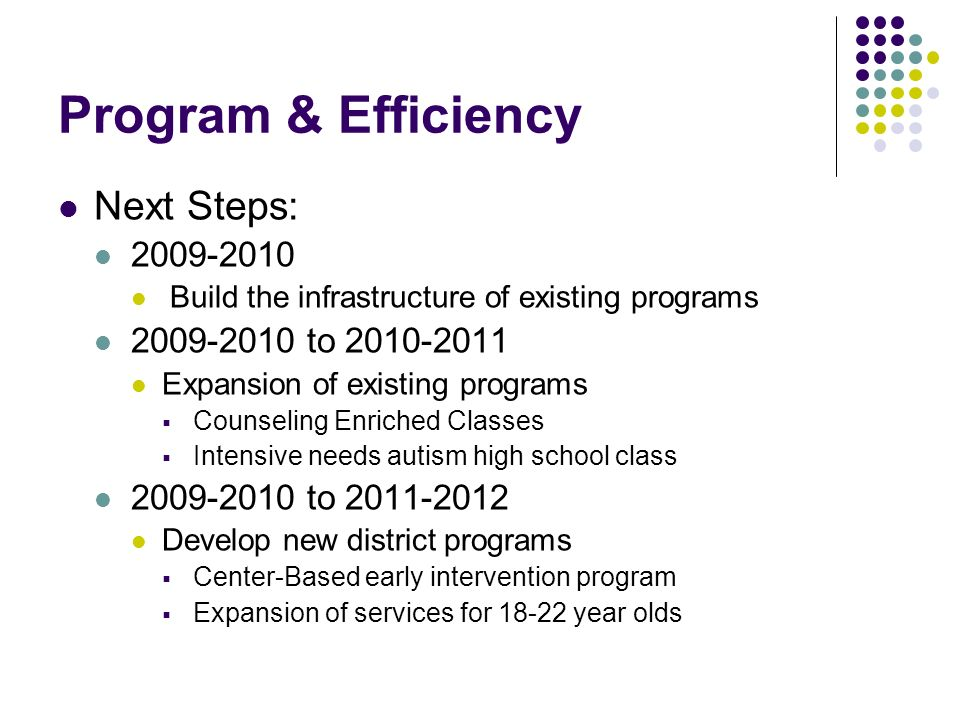 Program & Efficiency Next Steps: 2009-2010 2009-2010 to 2010-2011