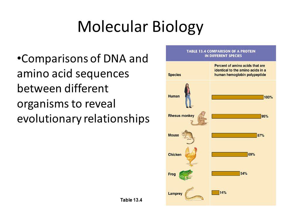 Molecular Biology Table 13.4.