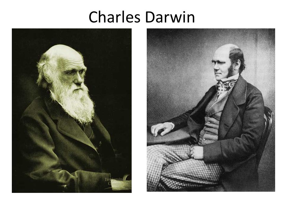 Charles Darwin Darwin (1809 - - English gentleman naturalist 1874 1859