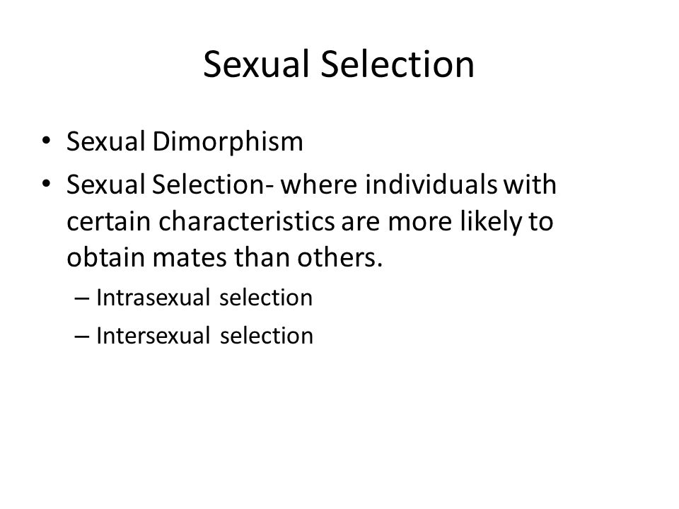 Sexual Selection Sexual Dimorphism