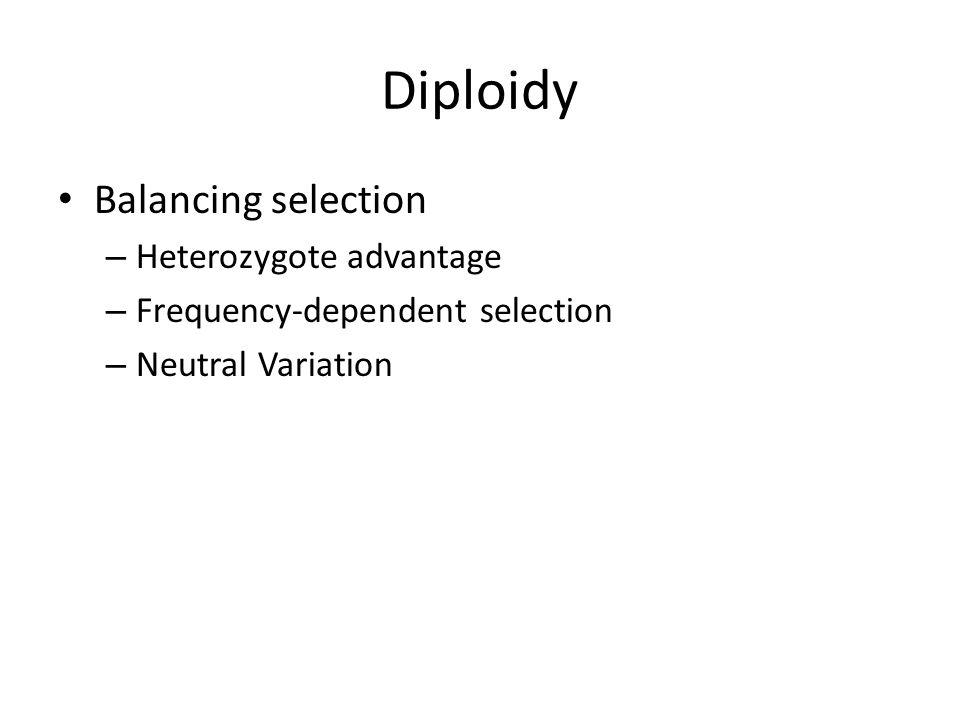 Diploidy Balancing selection Heterozygote advantage