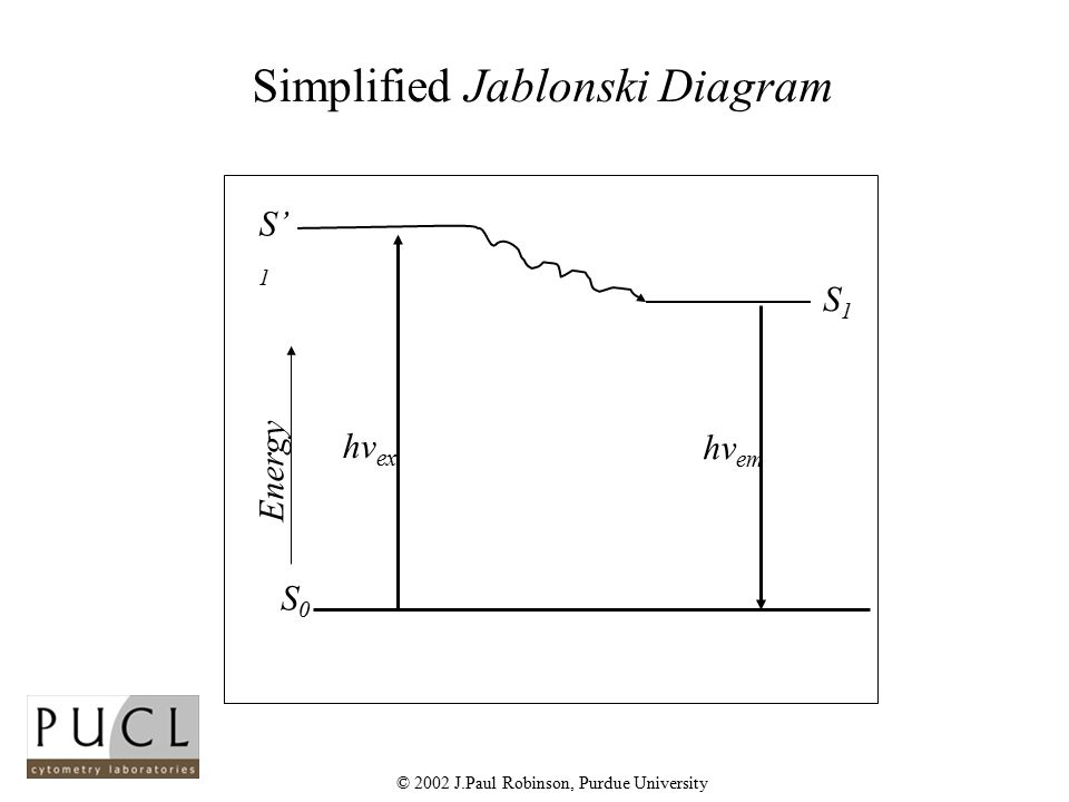 Light and fluorescence ppt video online download simplified jablonski diagram ccuart Images