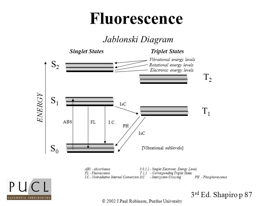 Light and fluorescence ppt video online download 2002 jul robinson purdue university ccuart Images