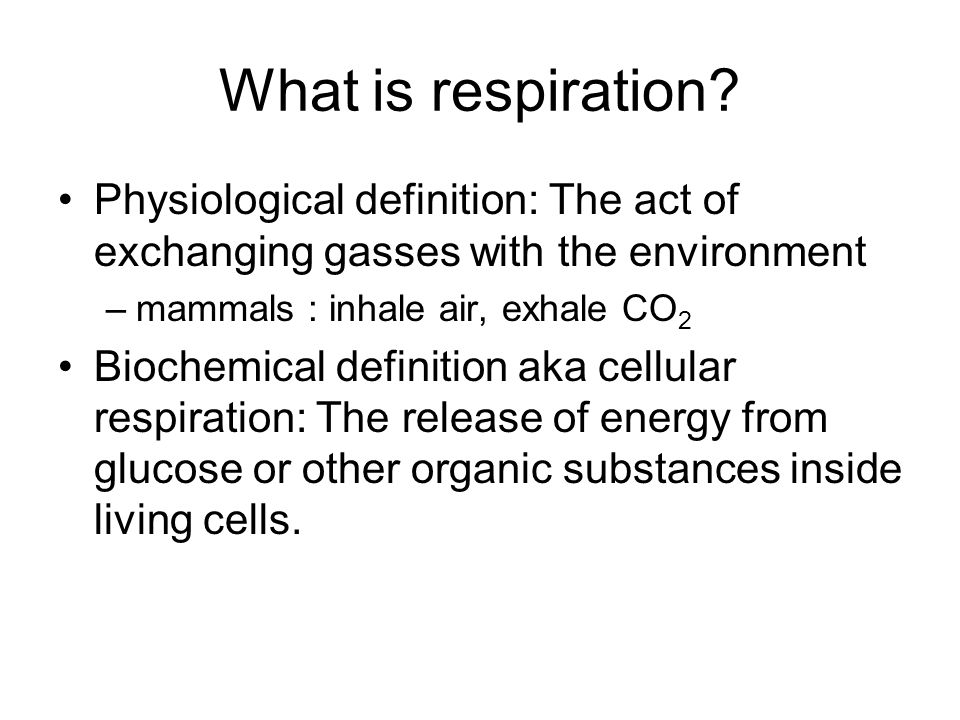 What Is Respiration Physiological Definition: The Act Of Exchanging Gasses  With The Environment. Mammals