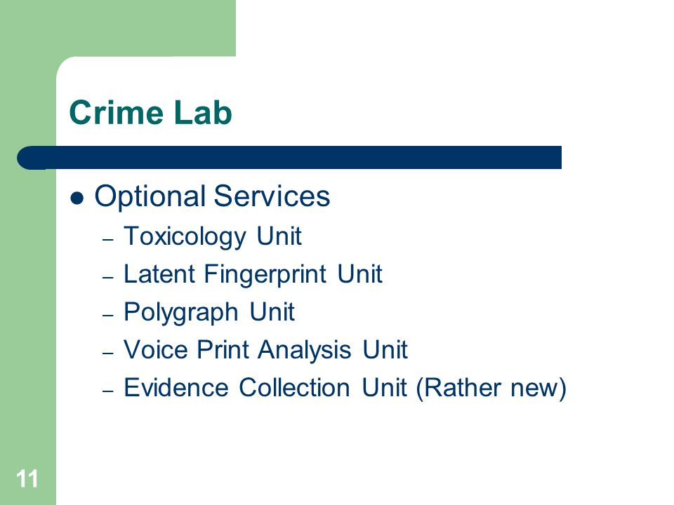 basics of forensic science pdf
