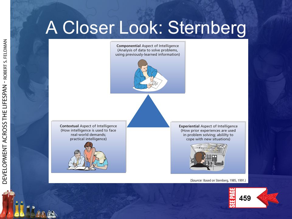 A Closer Look: Sternberg