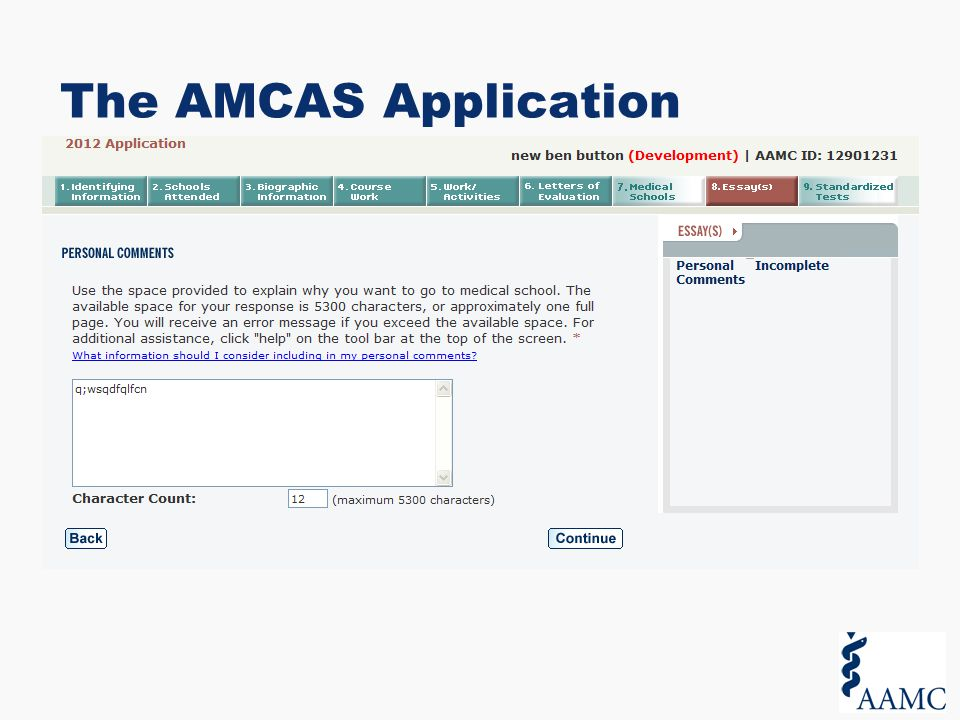 AMCAS Activity and Most Meaningful Entries