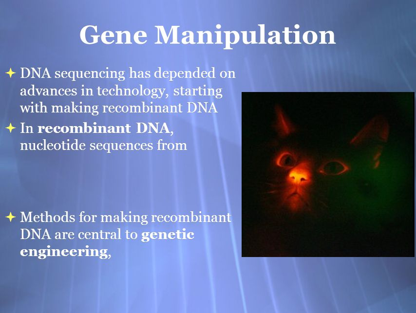 Advances In Dna Sequencing
