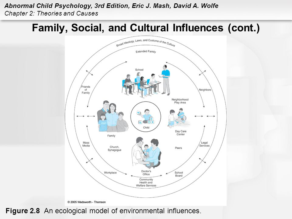Family, Social, and Cultural Influences (cont.)
