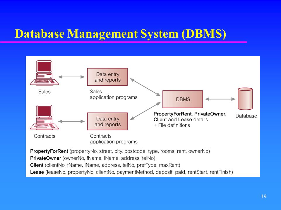 an introduction to the dbms database management system Database system concepts 11 ©silberschatz, korth and sudarshan chapter 1: introduction database management system (dbms.