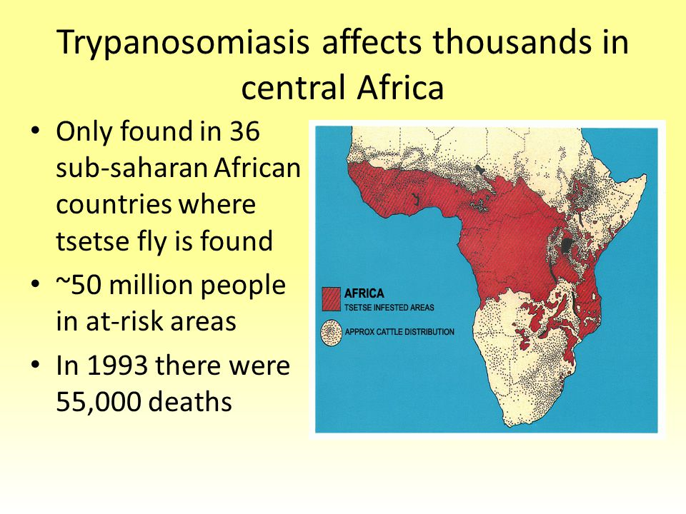 trypanosomiasis in central african republic Trypanosoma brucei gambiense causes human african  the central nervous  system, and the skin [15–17]  central african republic.
