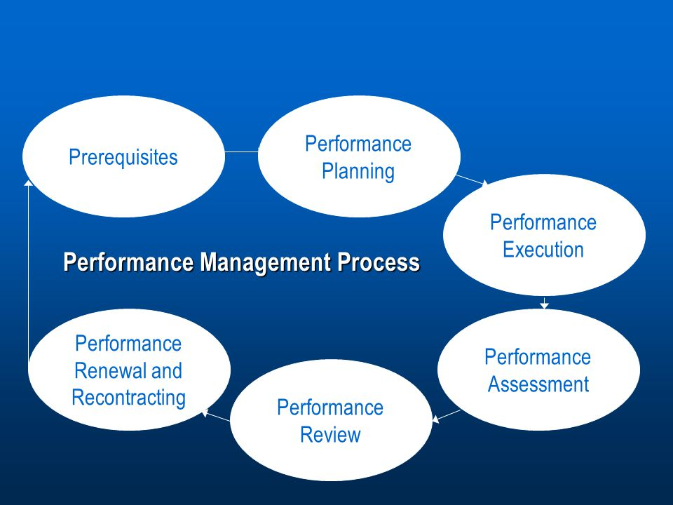 management assessment for personal planning and Or her performance of critical skills into the professional development plan  for all professional development plan assessment  management and other skills .