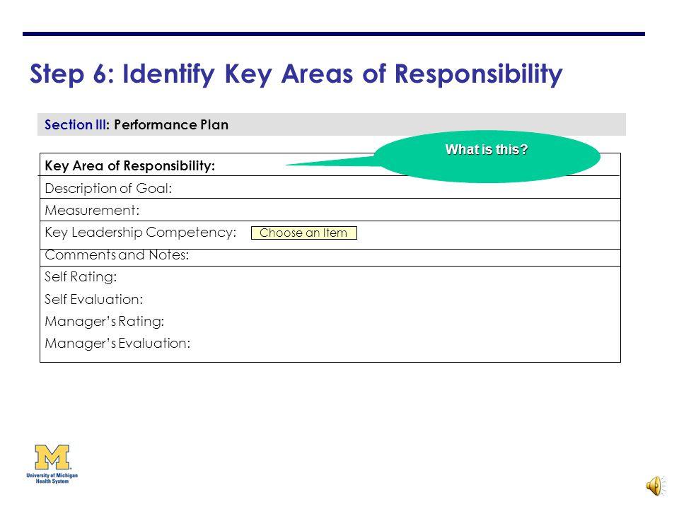 11 key areas of responsibility pdf
