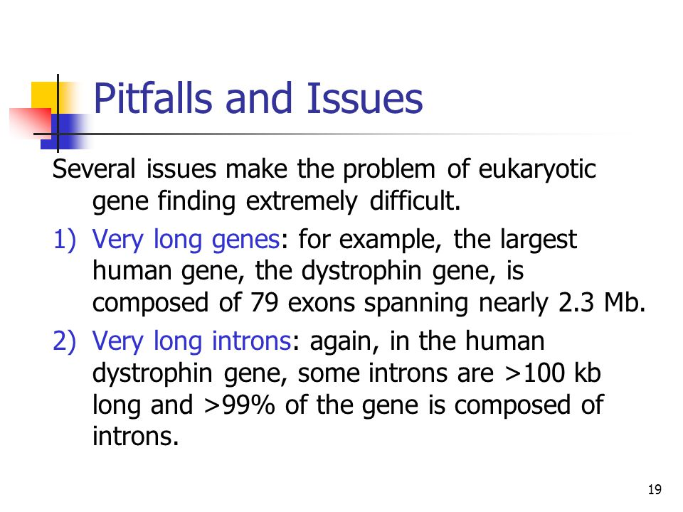 Pitfalls and Issues Several issues make the problem of eukaryotic gene finding extremely difficult.
