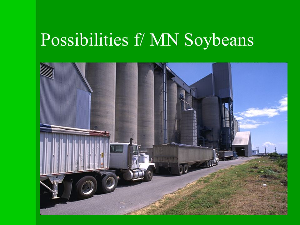 Possibilities f/ MN Soybeans