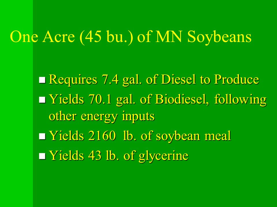 One Acre (45 bu.) of MN Soybeans