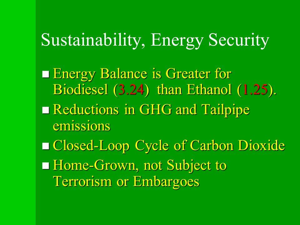 Sustainability, Energy Security