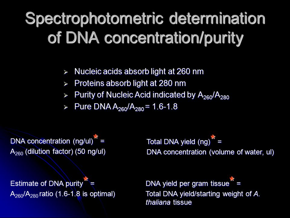 spectrophotometric determination of protein concentration of Start studying chemistry certification learn vocabulary to calculate the protein concentration the result must be: in spectrophotometric determination.