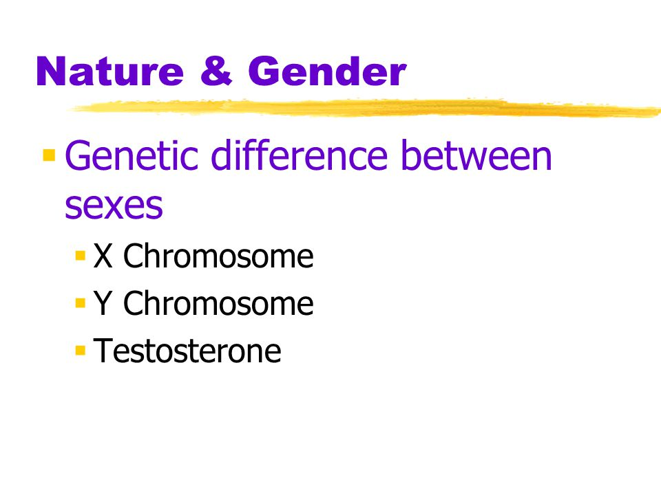 Genetic difference between sexes