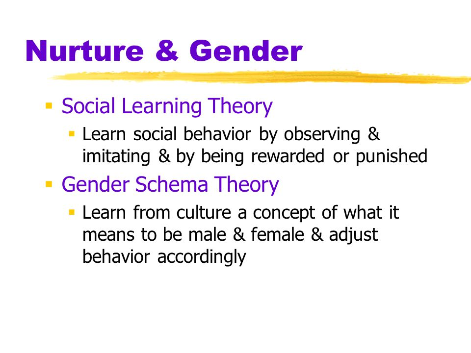 Nurture & Gender Social Learning Theory Gender Schema Theory