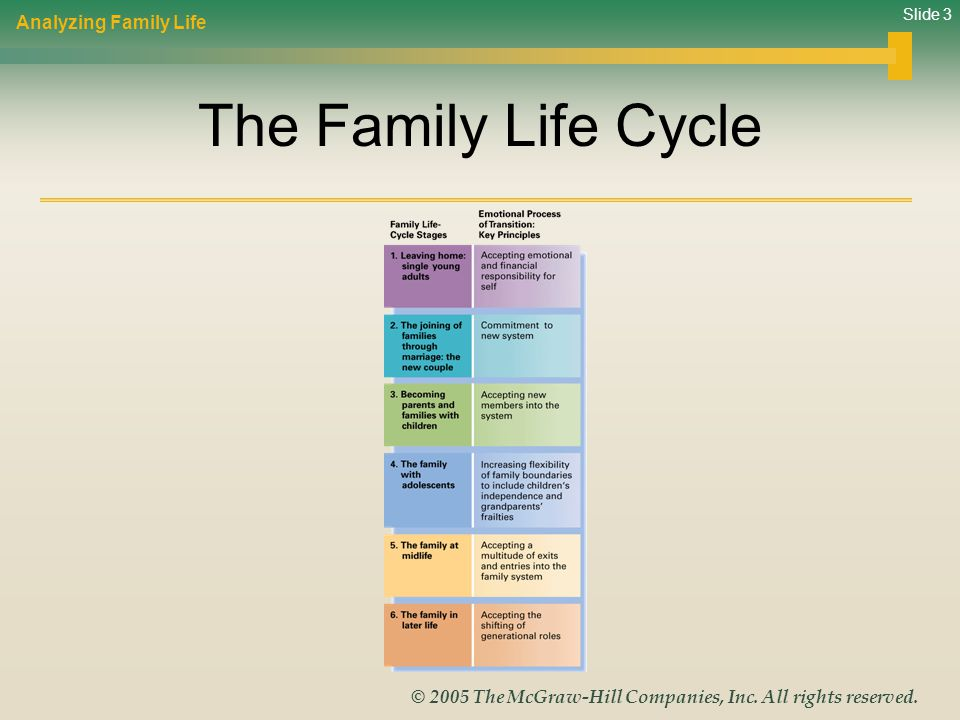 Analyzing Family Life The Family Life Cycle