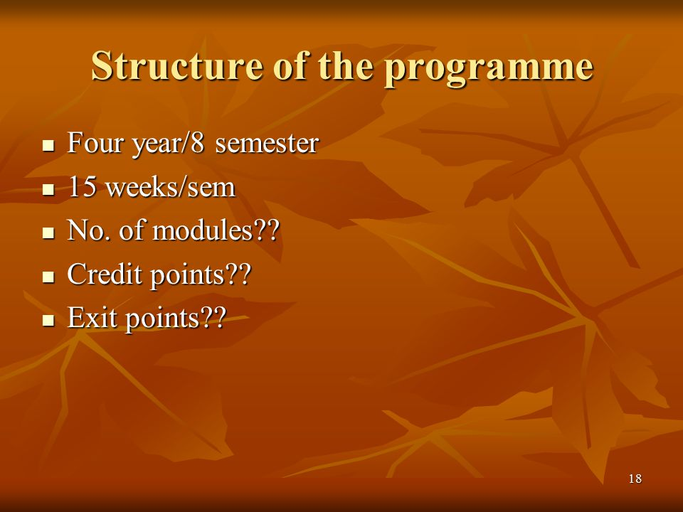Structure of the programme