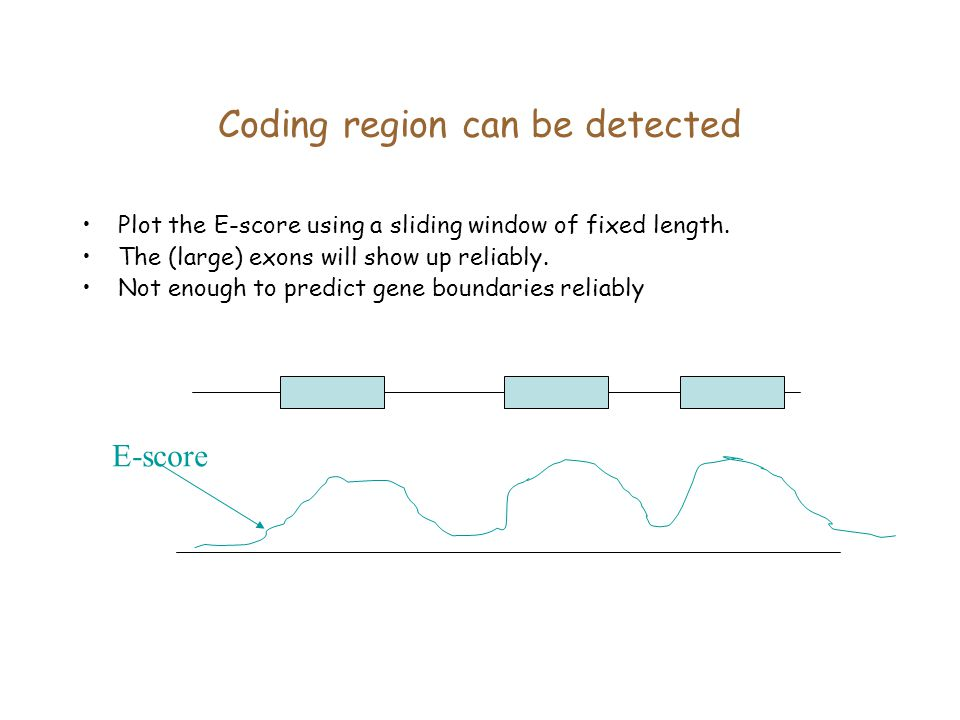 Coding region can be detected