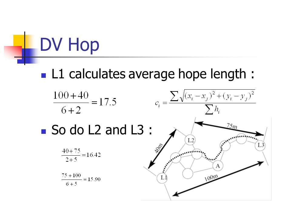 DV Hop L1 calculates average hope length : So do L2 and L3 :