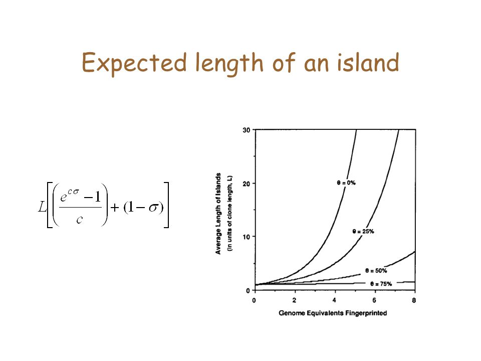 Expected length of an island