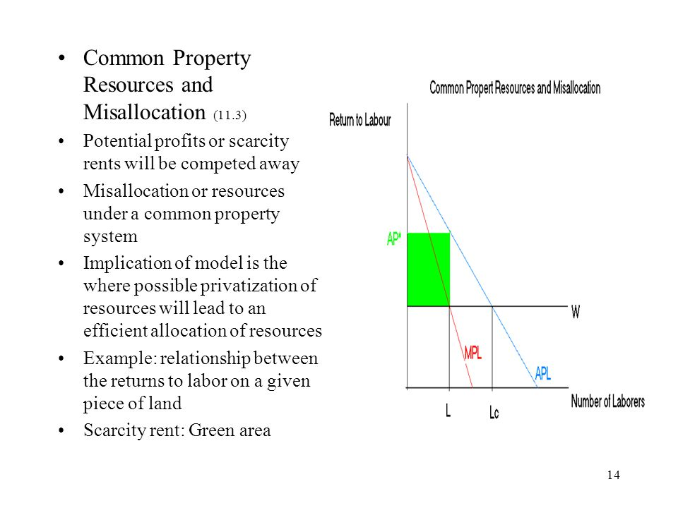 Common Property Resources and Misallocation (11.3)