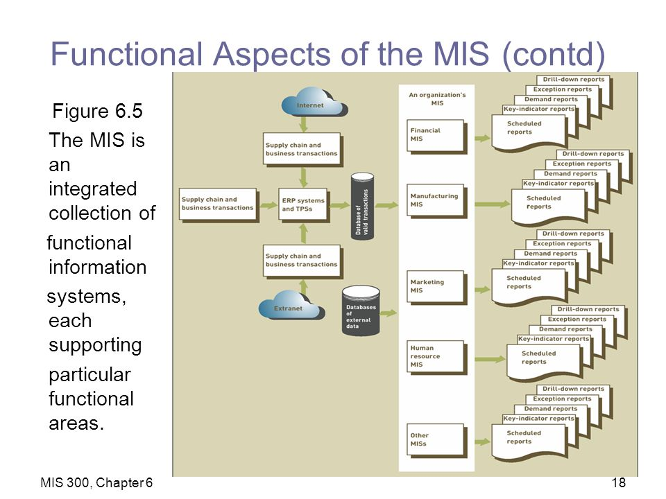 functional aspects of a management information system Management information systems (mis)• management information system (mis) • an mis provides managers with information and support for effective decision making, and functional aspects• mis is an integrated collection of functional information systems, each supporting particular functional areas.