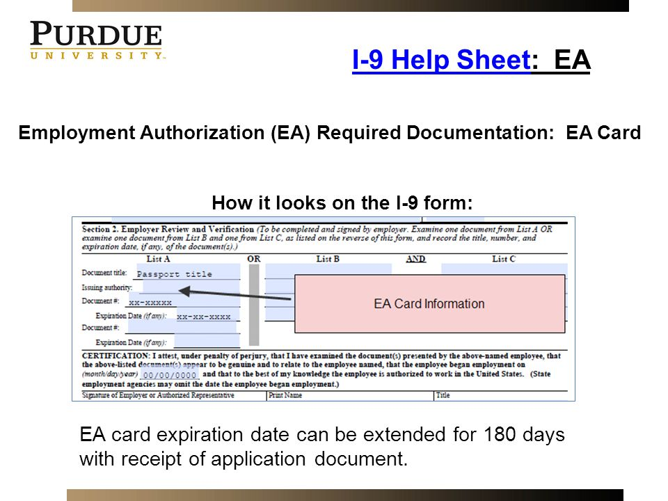 Employment Authorization Card Document Number I 9 Image Gallery - Hcpr