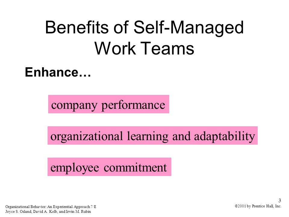 Group Dynamics And Work Teams - ppt download