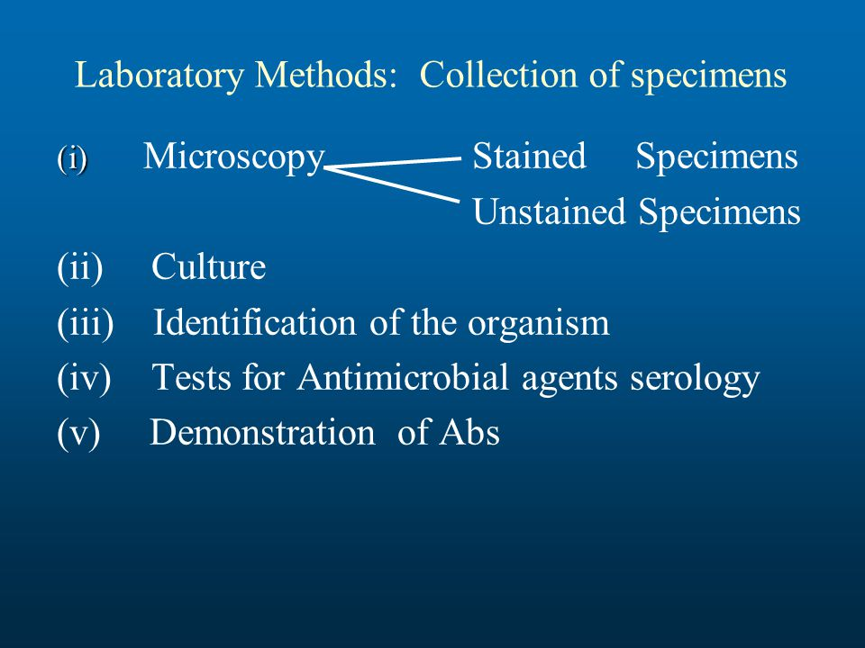 bacterial identification methods in the microbiology laboratory pdf