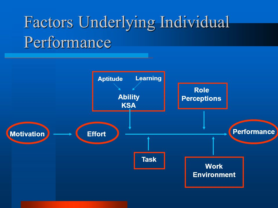 Factors Underlying Individual Performance
