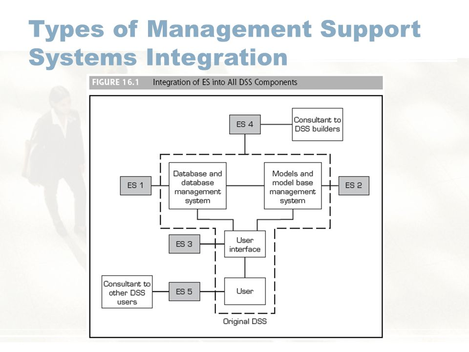 Types of Management Support Systems Integration