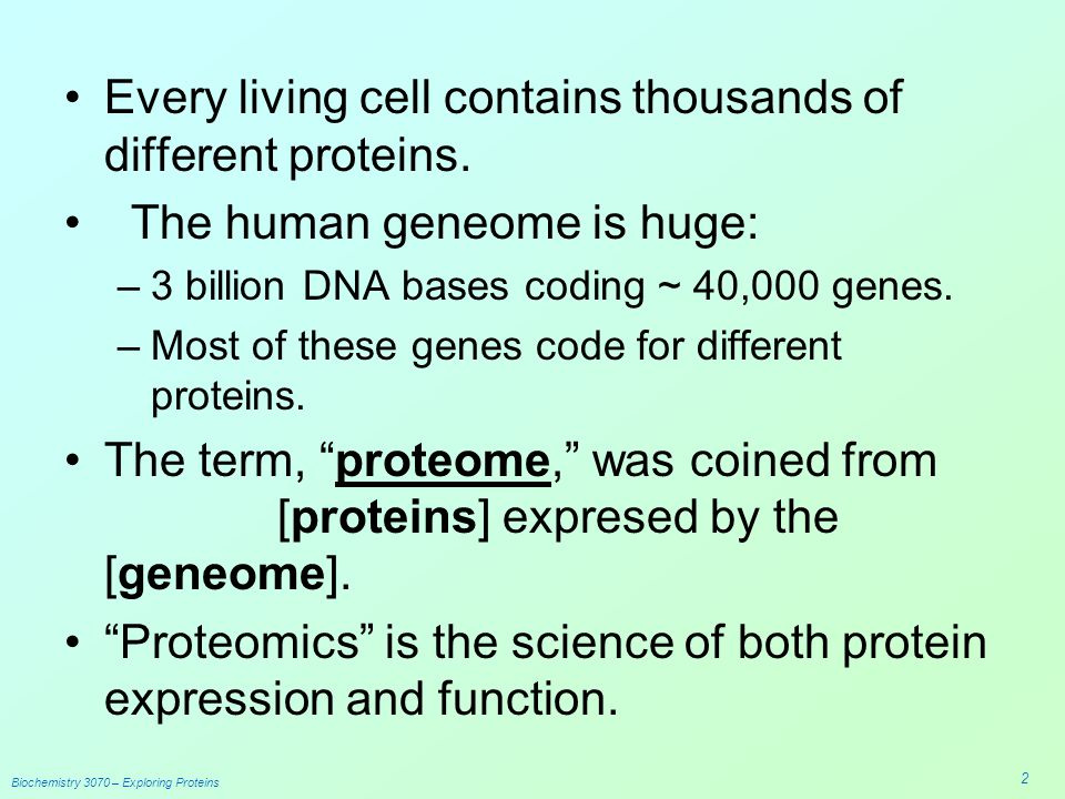 biochemistry of proteins isolation of ovalbumin Biochemistry and molecular biology cold denaturation of proteins peter l privalov abstract this article summarizes all experimental facts concerning the.