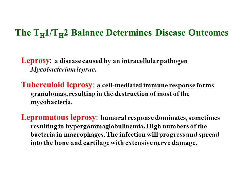 The TH1/TH2 Balance Determines Disease Outcomes