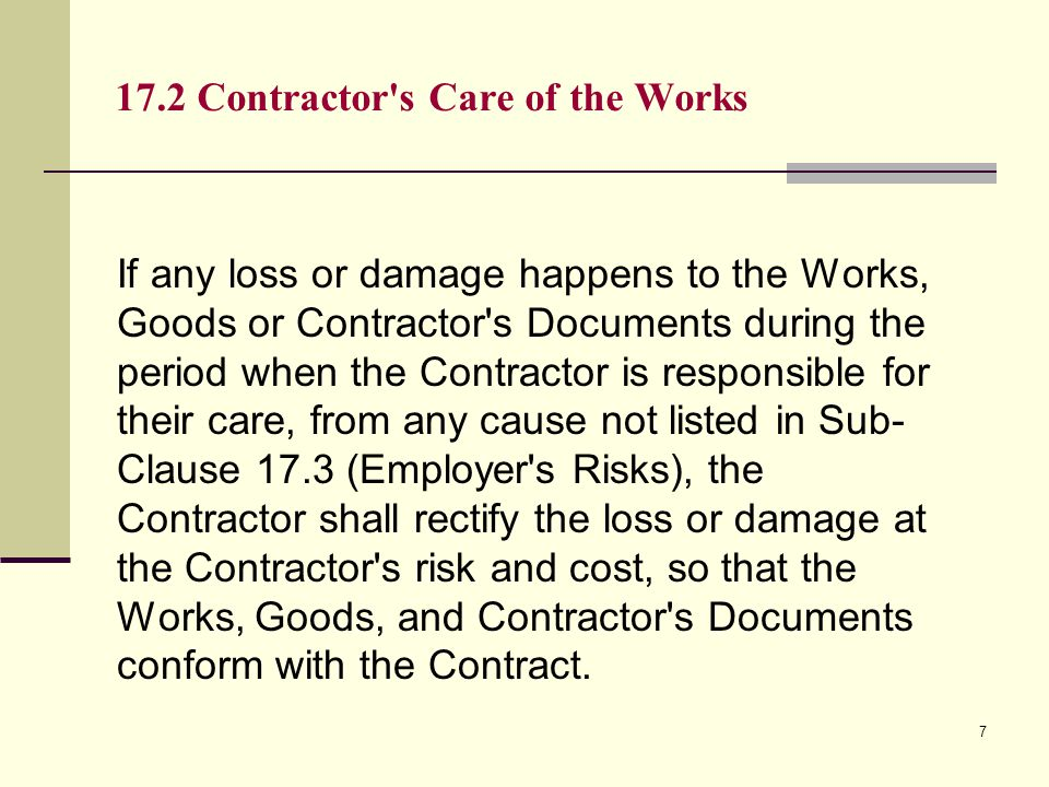17.2 Contractor s Care of the Works
